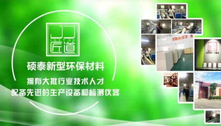 广州硕泰新型环保材料有限公司企业及项目介绍